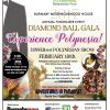 Diamond Ball Gala 2017
