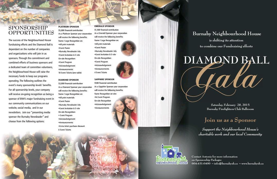 Diamond Ball Brochure-1